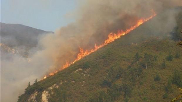 ep incendio forestalasturias