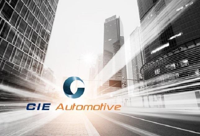 Cie Automotive Compra Inteva Roof Systems Por 650 Millones