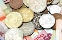 divisas emergentes 1