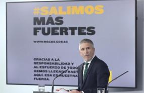 ep el ministro del interior fernando grande-marlaska comparece ante los medios tras el consejo de