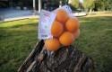 ep alcampo testabolsas reutilizableslas comprasfrutasverdurasg