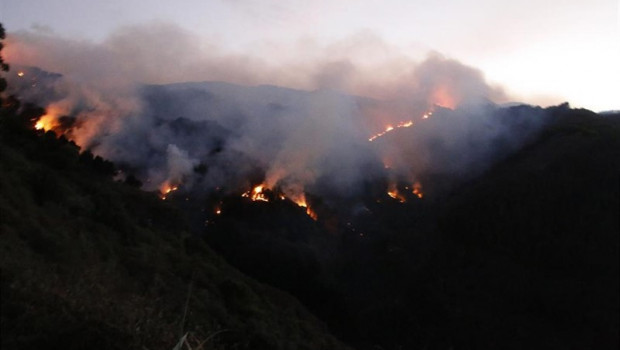 ep incendiovallesecola islagran canaria 20190818121702